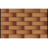 ELEWACJA SZKLIWIONA MIODOWA 65x245